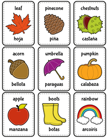Flash cards: autumn in english and spanish